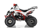 Квадроцикл MOTAX ATV RAPTOR SUPER LUX 125